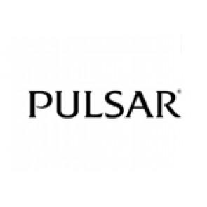 Bracelet de montre Pulsar 70P8JG / Y182 6d40 Acier Acier
