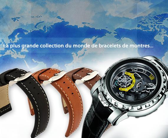 Cherchez-vous un bracelet de montre de marque?
